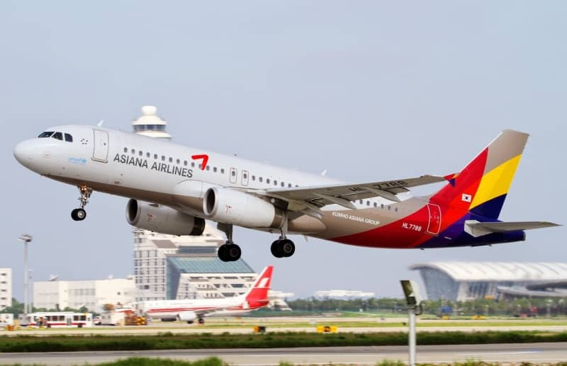 Asiana-Airlines2.jpg (258 KB)