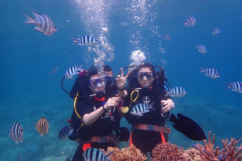 Gợi ý điạ điểm lặn biển ngắm san hô đẹp ở Nha Trang