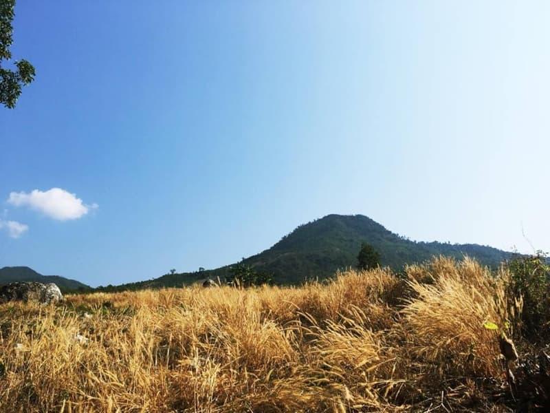 Khu-du-lich-sinh-thai-lang-mo-an-nam-tour-3.jpg (96 KB)