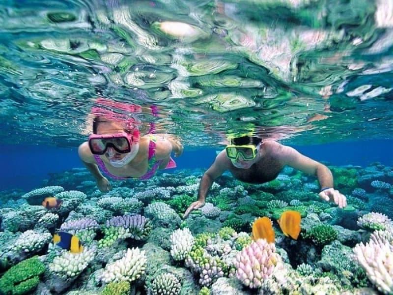 5 tip lặn biển Nha Trang cho các tín đồ xê dịch