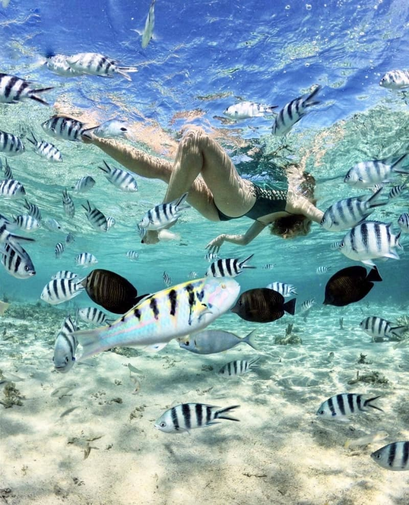 snorkeling-nha-trang-3.jpg (226 KB)