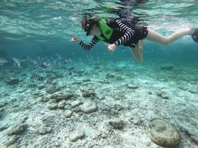 so-sanh-scuba-diving-va-snorkeling-5.jpg (196 KB)