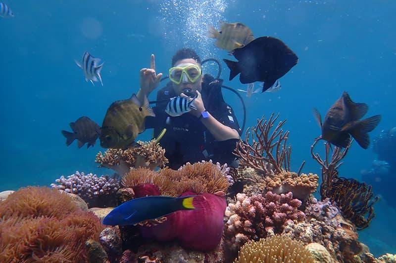 Những điều cần lưu ý khi đi lặn biển ở Nha Trang