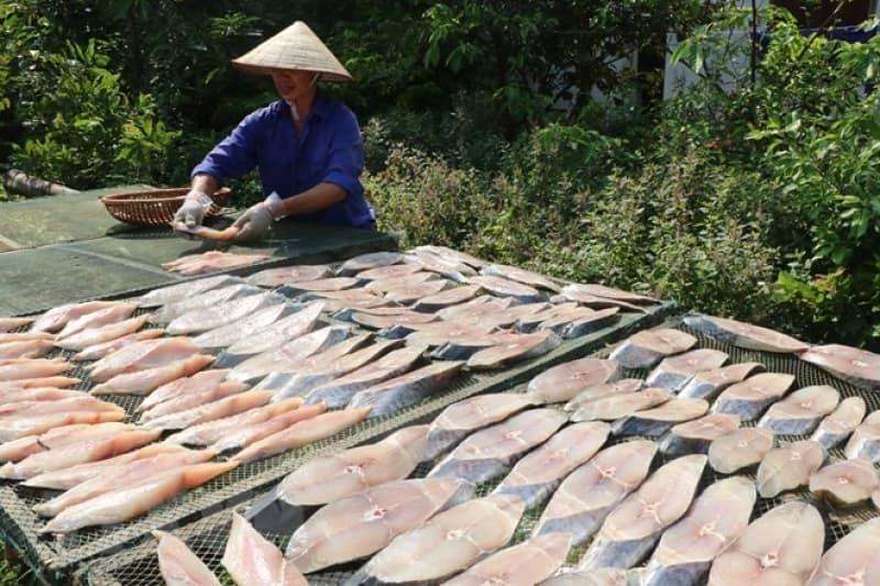 Review mua hải sản tươi và khô tại Nha Trang từ A đến Z
