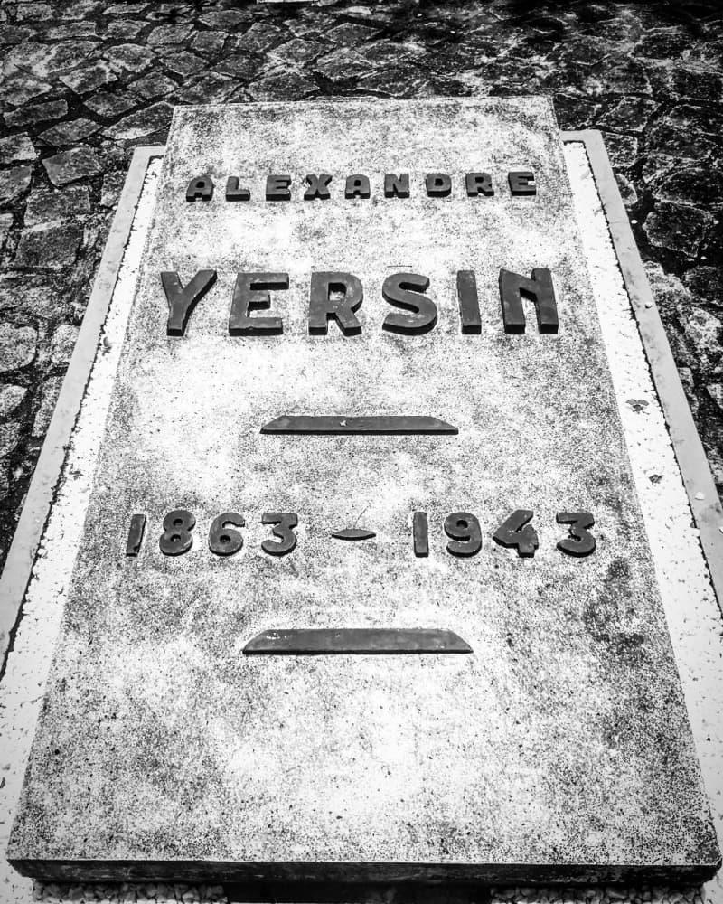 mo-yersin-2.jpg (430 KB)