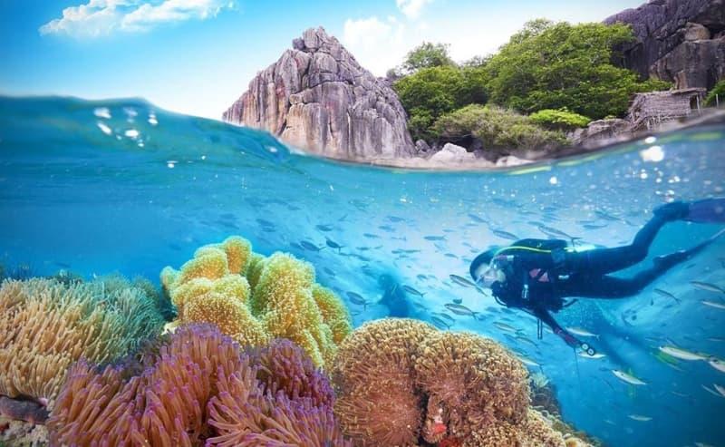 Vinpearl nha trang khai trương khu lặn biển mới
