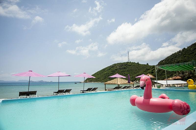 Phao bơi hồng hạc tại hồ bơi