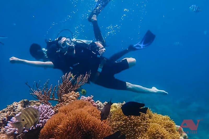 Dịch vụ lặn biển Hòn Mun