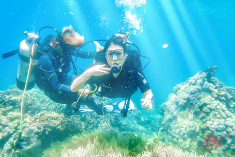 Lặn biển với sự hướng dẫn của thợ lặn chuyên nghiệp