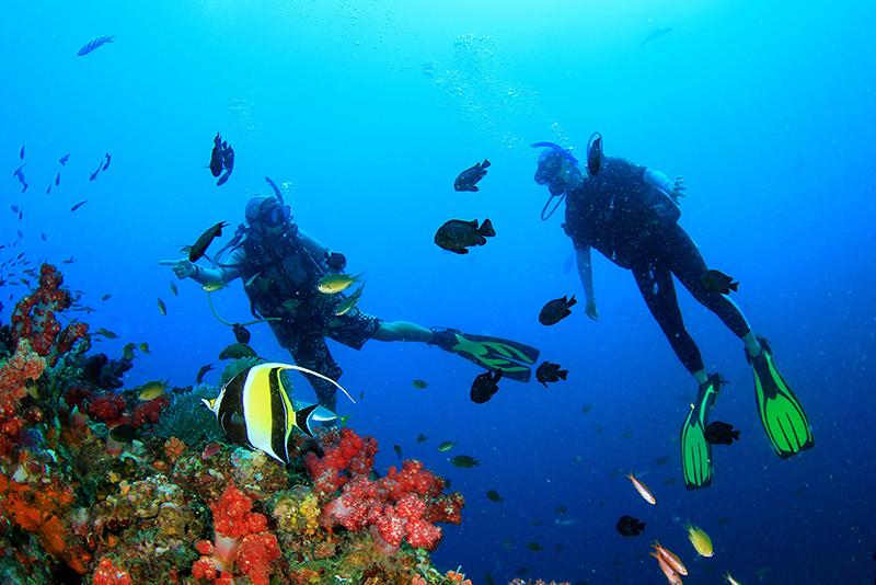 Tour 4 đảo và Lặn biển