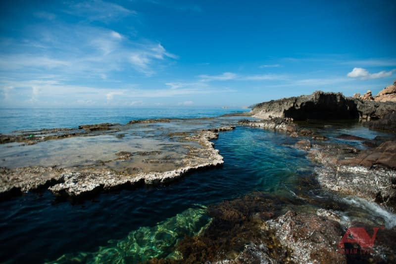 thềm san hô tại Hang Rái