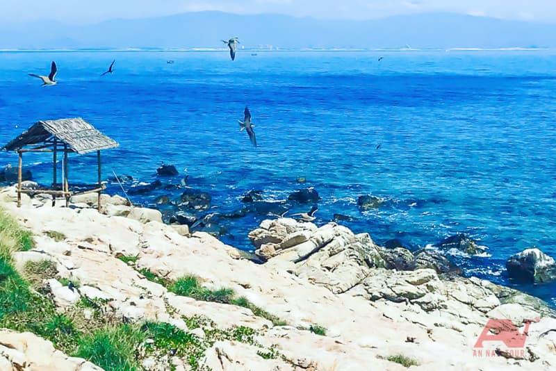 Biển Hòn Nội trong vắt