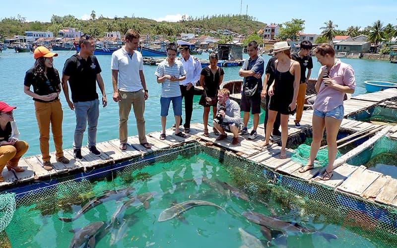 Chọn hải sản tại Làng Chài