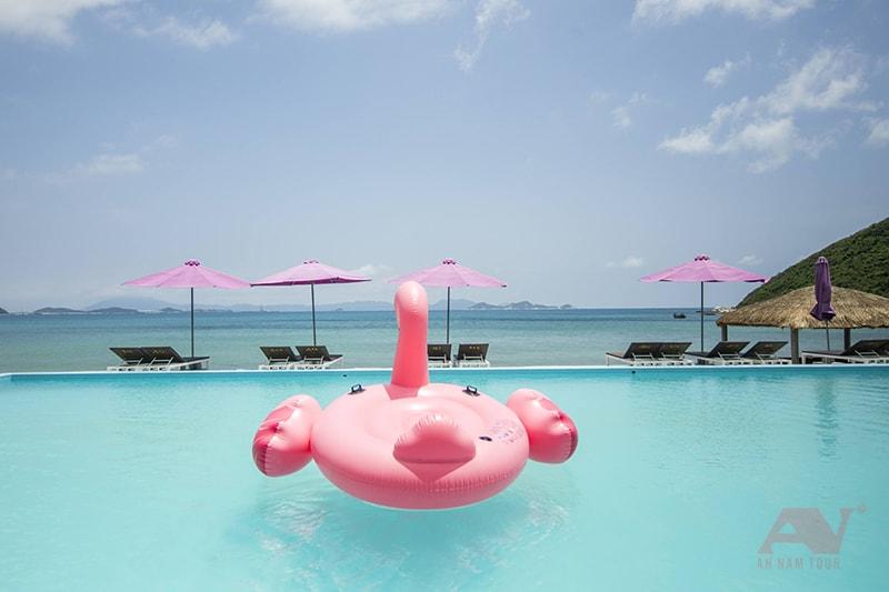 Hồ bơi và phao bơi hồng hạc