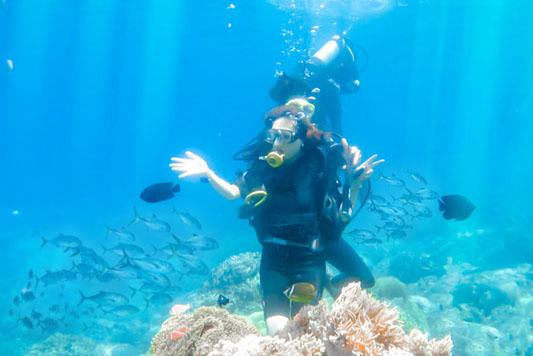 Tour lặn biển Hòn Mun