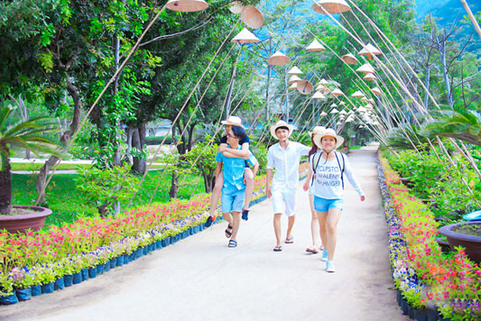 Tour Suối Hoa Lan – Đảo Khỉ